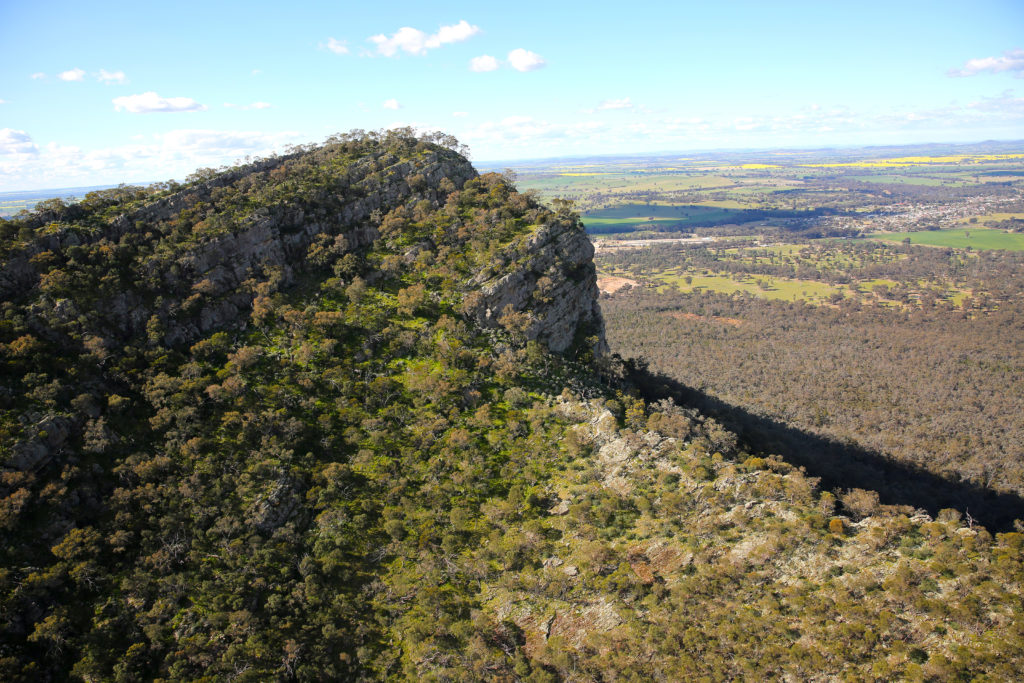 Landscape image of The Rock Nature Reserve - Kengal Aboriginal Place in Lockhart Shire