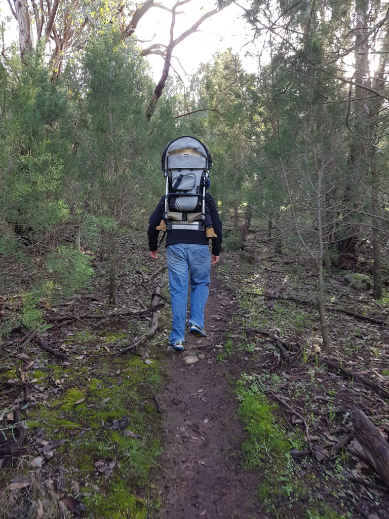 Hiker in forest trail in Cootamundra